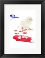 Framed Chicks 3