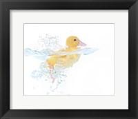 Framed Ducks 1