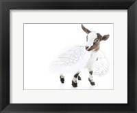 Framed Goats 3