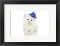 Framed Kittens 5