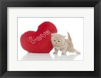 Framed Kittens 28