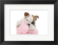 Framed Puppies 57