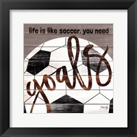 Framed Soccer Goals