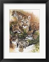 Framed Feline Rhapsody