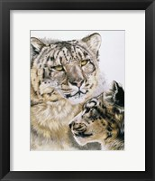 Framed Panthera Uncia