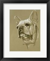 Framed French Bulldog