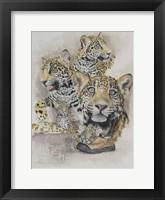 Framed Jaguars