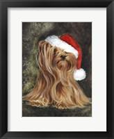 Framed Noel - Yorkshire Terrier