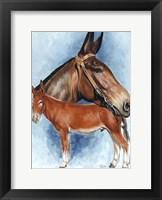Framed Donkey