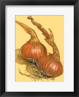 Framed Spanish Onions
