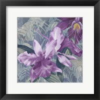 Framed Windsong Orchid Blooms