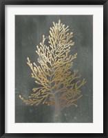 Framed Gold Foil Algae IV on Black Wash