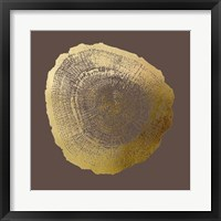 Framed Gold Foil Tree Ring IV on Bitter Chocolate
