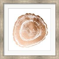 Framed Rose Gold Foil Tree Ring III
