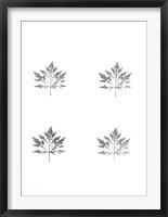 Framed 4-Up Silver Foil Leaf I