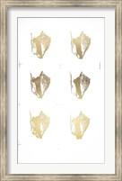 Framed 6-Up Gold Foil Shell III