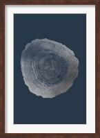 Framed Silver Foil Tree Ring IV on Cobalt
