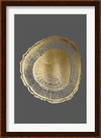 Framed Gold Foil Tree Ring I on Dark Grey