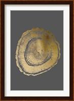 Framed Gold Foil Tree Ring III on Dark Grey