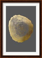 Framed Gold Foil Tree Ring IV on Dark Grey