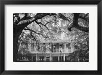 Framed Jackson Square, New Orleans