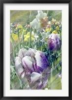 Framed Spring at Giverny I