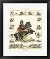 Framed Equestrian Display I
