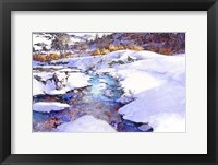 Framed Deer Creek Bend - Colorado
