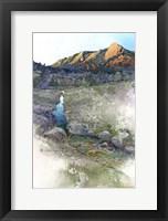 Framed Flatirons Sunrise - Boulder, Co.
