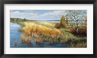 Framed Marsh Edge