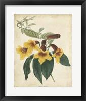 Framed Tropical Floral VI