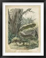 Framed Nature's Gathering V