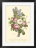 Framed Plentiful Bouquet III