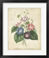 Framed Victorian Bouquet I