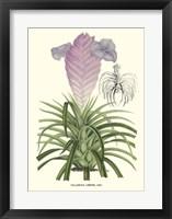 Framed Lavender Orchids III