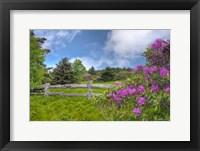 Framed roan mountain