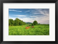 Framed rolled hay bales