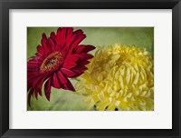 Framed Red & Yellow