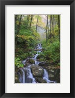Framed Small Waterfalls 3