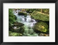 Framed Jim Bales Rapids