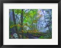 Framed Roaring Fork Fog