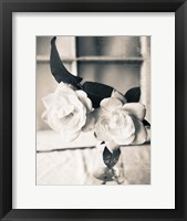 Framed Roses In A Vase BW