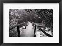 Framed Wooden Bridge In Fog BW