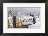 Framed Country Red