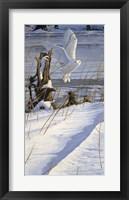 Framed Great White Hunter