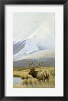 Framed Autumn Uprights, Elk
