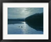 Framed Moonlight Loons