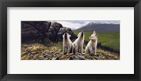 Framed Three Wolves
