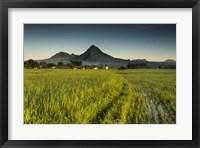 Framed Dinalupihan