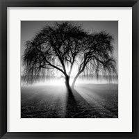 Framed Lighting Tree